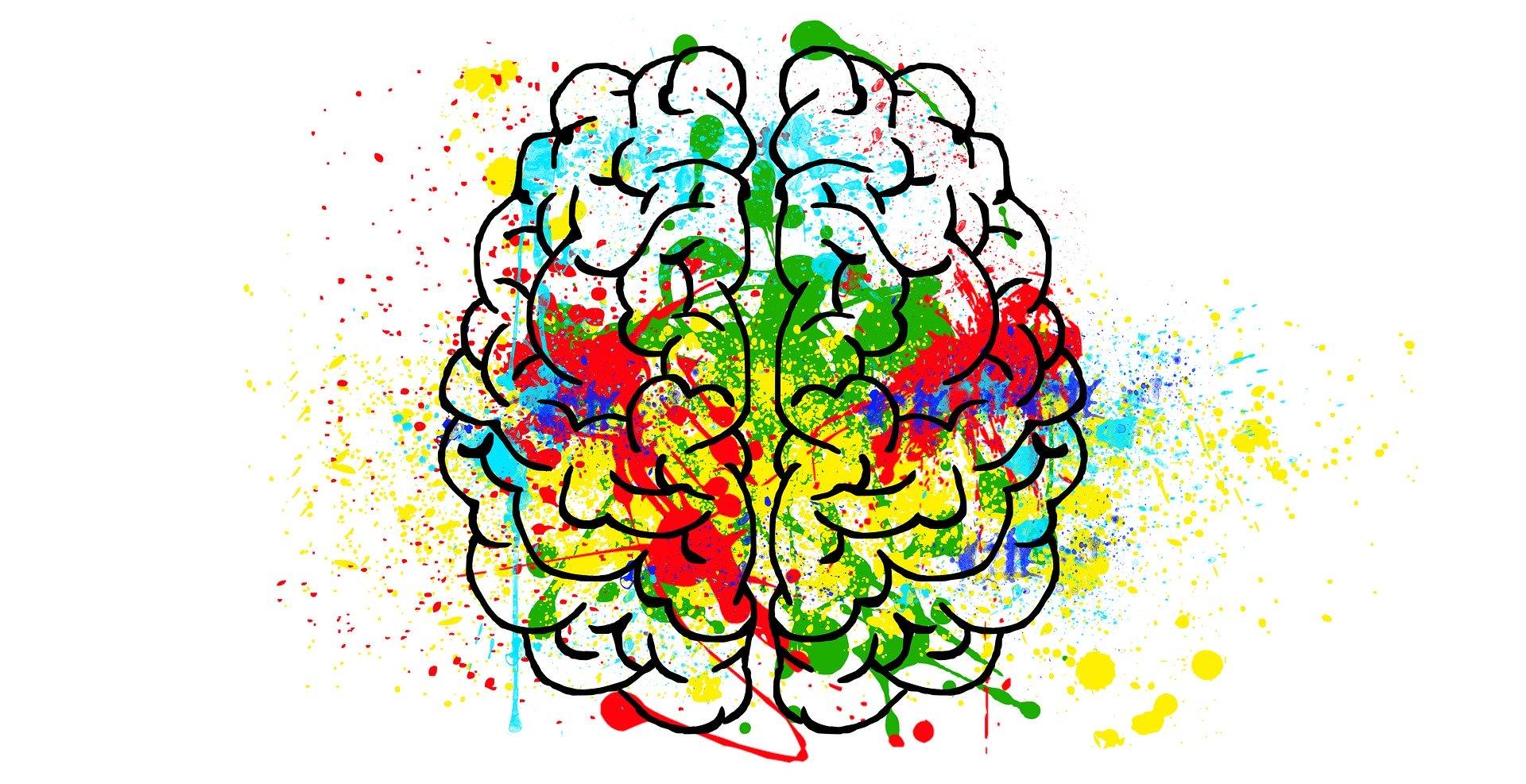 Dibujo de cerebro humano con pintura de colores